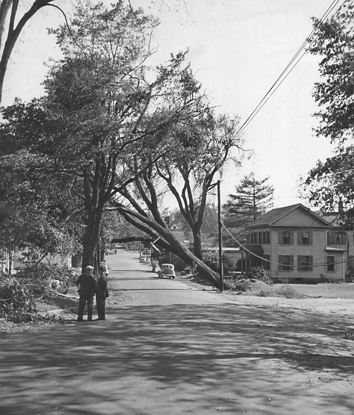 Hurricane of 1938 - Mainstreet