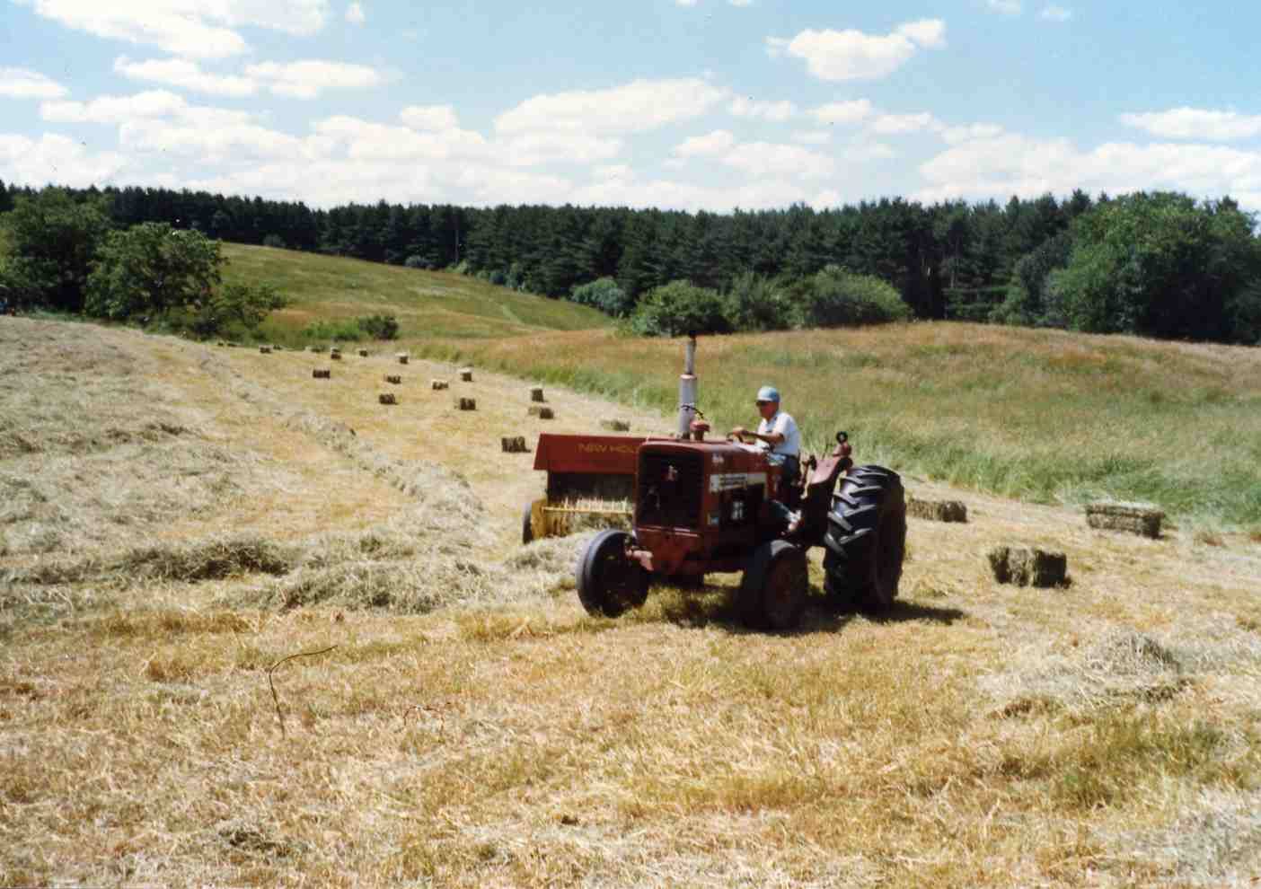 Johnson Farm, Haying in the 1960s